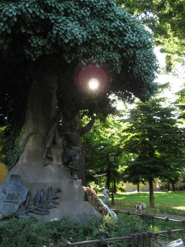 Statua - Padova (2577 clic)