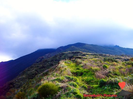Il vulcano Stromboli visto da Ginostra. (569 clic)