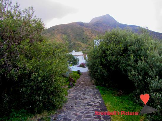 Tipica strada di Ginostra. (224 clic)