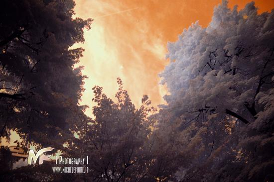 The hell above the paradise  - Milano (475 clic)