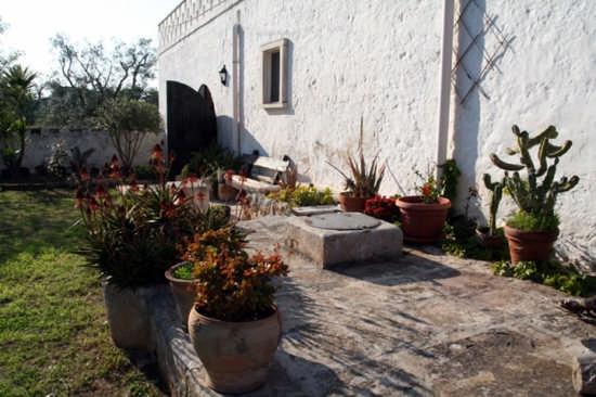 Masseria corte est - Carovigno (2809 clic)