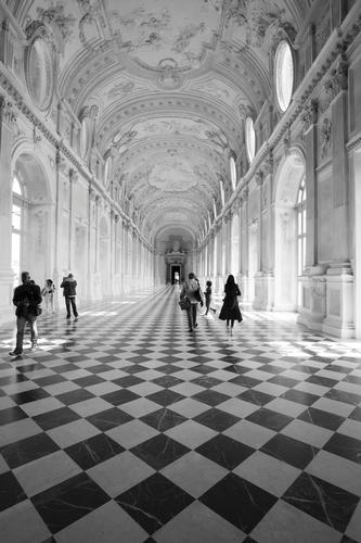 Reggia Venaria Reale (406 clic)