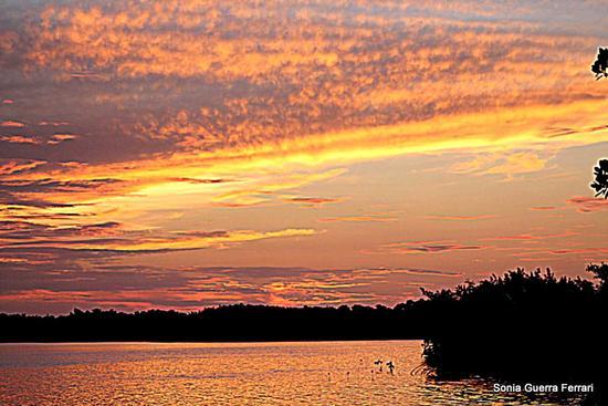tramonto (499 clic)