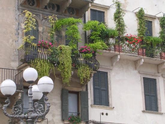 Balconi Fioriti - Verona (6742 clic)