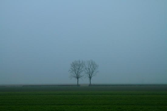 Standing Close - Mirandola (518 clic)