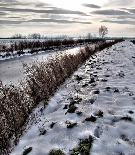 Passeggiata invernale - Cavezzo (519 clic)