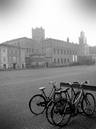 In piazza con la bici - Carpi (660 clic)