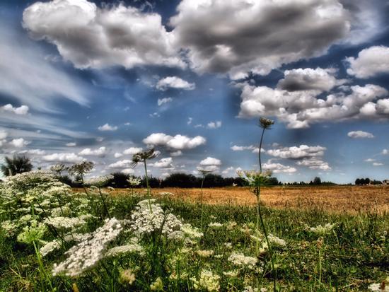 Big Sky of my Land; - Cavezzo (592 clic)