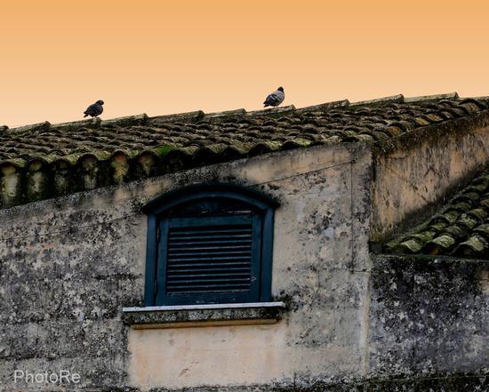 Sassi di Matera (1099 clic)