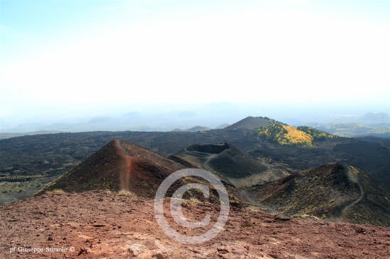 Nicolosi - Vulcani spenti al rifuggio Sapienza. (7066 clic)
