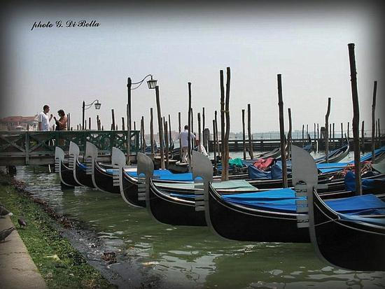 Gondole alla riva degli Schiavoni - Venezia (438 clic)