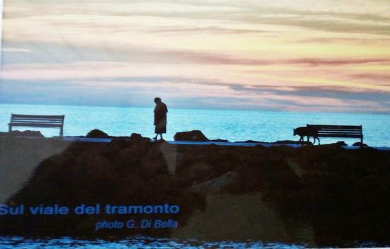 La vecchia .... il cane sul viale del tramonto - Marinella di selinunte (350 clic)