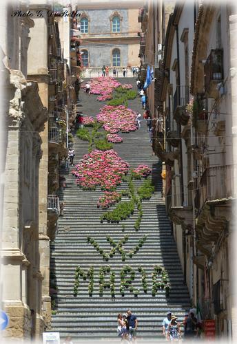 La scalinata di  Santa Maria del Monte Caltagirone con l'infiorata  (225 clic)