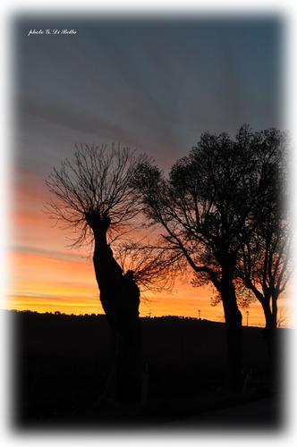 Bel tramonto al Lago Arancio. - Sambuca di sicilia (665 clic)