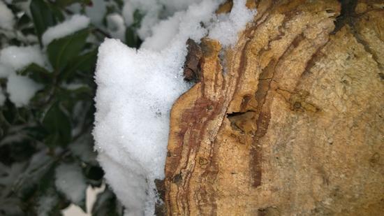 caldo  freddo - Foggia (445 clic)