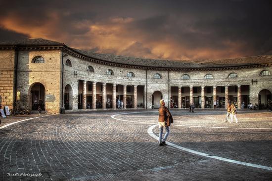 Foro Annonario Senigallia (1092 clic)