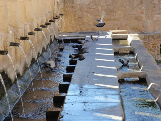 La Grande Fonte  - Leonforte (942 clic)