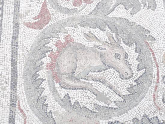 Mosaici - Piazza armerina (1151 clic)