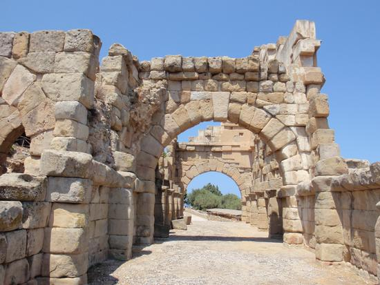 Zona Archeologica    - Tindari (2655 clic)