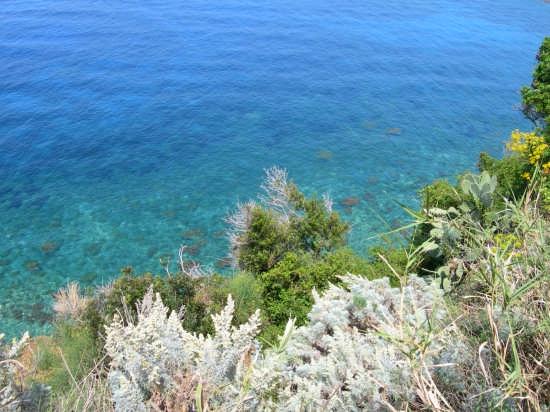 Panorama da Capo Milazzo (4509 clic)