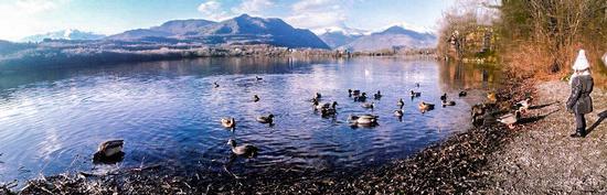Lago piccolo di Avigliana (594 clic)