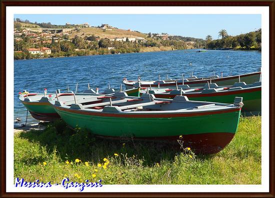 Ganzirri Lago grande - Messina (652 clic)