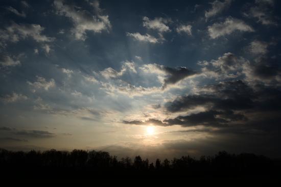 Uno sguardo al cielo sugl'argini cremonesi - Cremona (384 clic)
