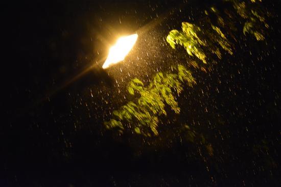 Ferrara, Pioggia (479 clic)