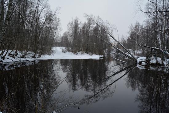 Finlandia, lago d'inverno e riflessi. (209 clic)