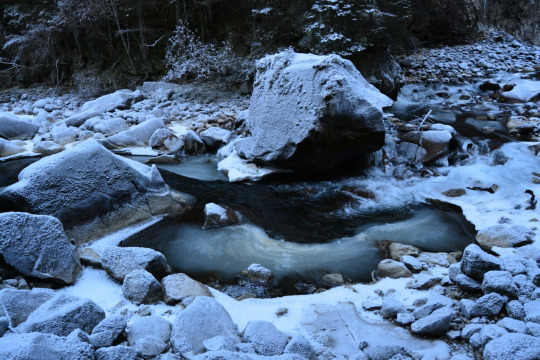 Cascate ghiacciate - San giacomo (627 clic)