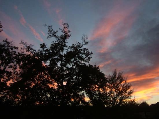 tramonto - Arezzo (3055 clic)