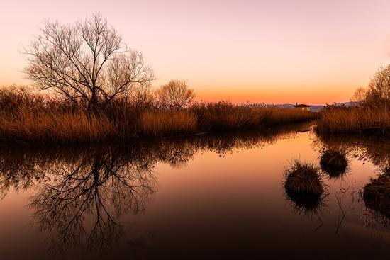 L'alba a Le Morette - Larciano (427 clic)