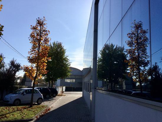 Autunno in azienda  - Fontanafredda - inserita il 27-Dec-17