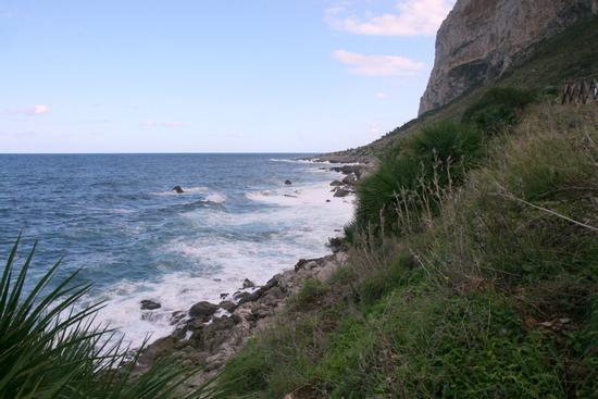 Il mare d'inverno.... - Riserva naturale capo gallo (2870 clic)