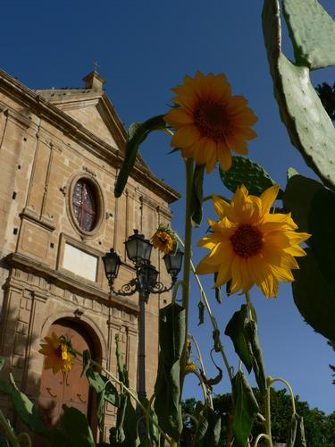 chiesa la Madonna del sasso - Leonforte (2594 clic)
