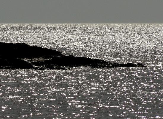argento vivo - Isola delle correnti (3604 clic)