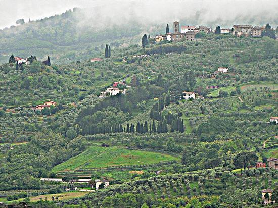colline toscane - Massa e cozzile (1915 clic)