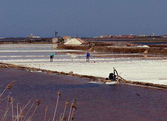 quelli che producono il famoso sale di Sicilia... - Saline di trapani (1883 clic)