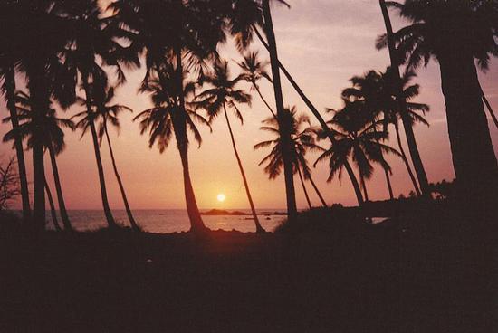 i mitici tramonti di Goa, India (1537 clic)