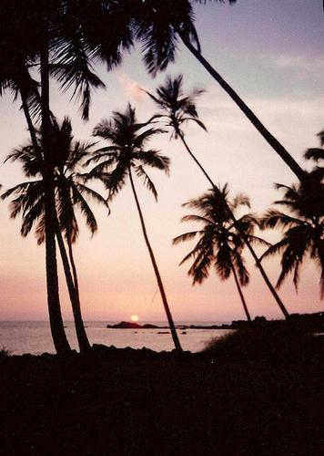 tramonto a Goa, Palolim (922 clic)