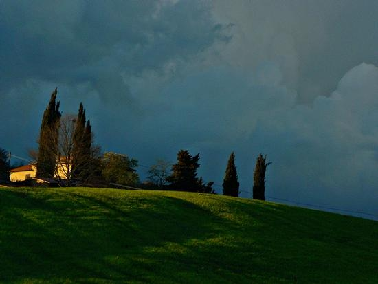 Toscana - Siena (2333 clic)