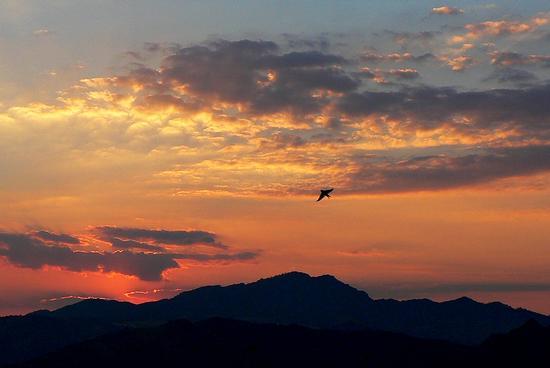 ...in volo...liberi sempre......... - Leonforte (2965 clic)