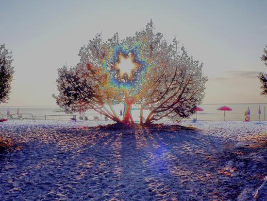 psychedelica - Orosei (1941 clic)