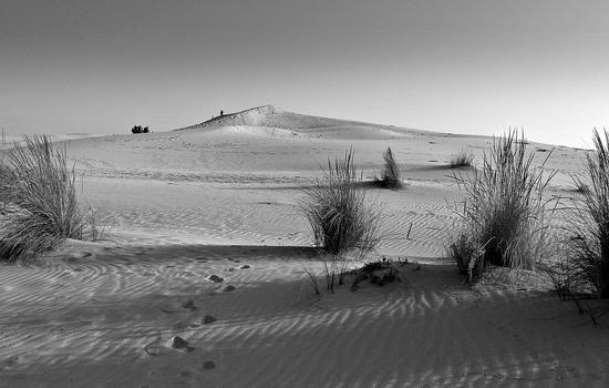 deserto - Porto pino (4276 clic)