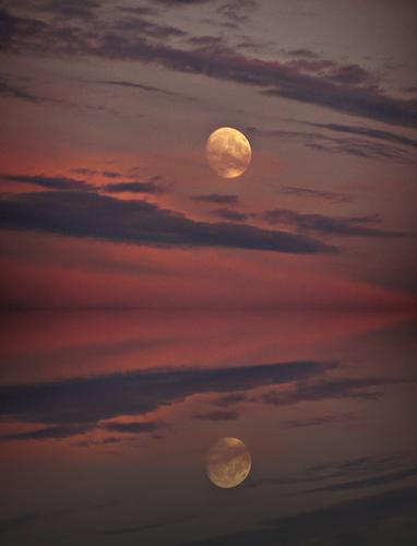 la luna allo specchio (1192 clic)