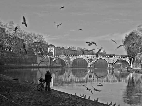 L'incanto del volo - Roma (2394 clic)