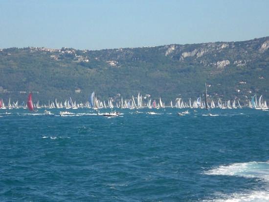 39 edizione barcolana a Trieste (2429 clic)