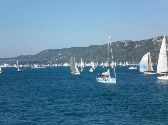 39 edizione barcolana a Trieste (4141 clic)
