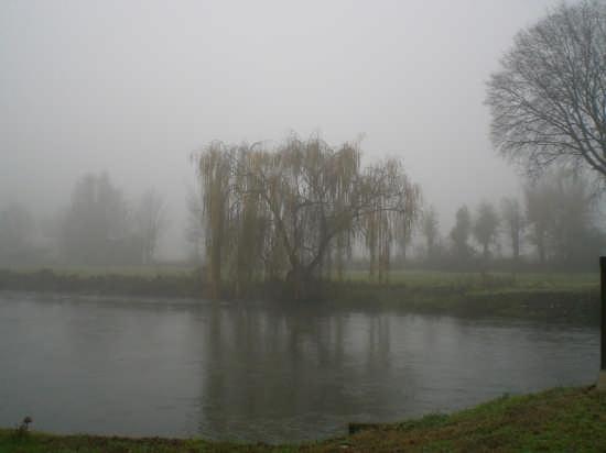 nebbia in val padana - Goito (4902 clic)