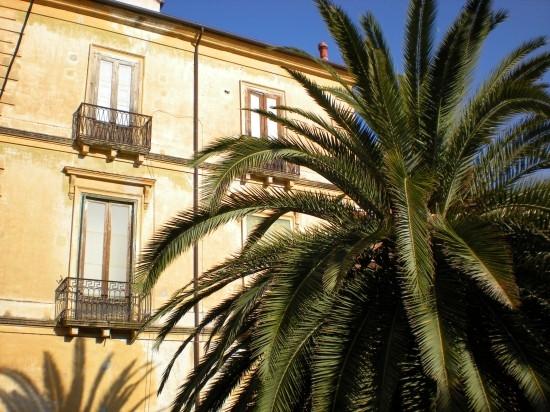 Palazzo nel centro storico - Cosenza (2840 clic)